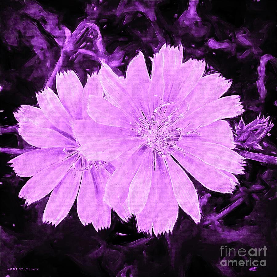 Blue Daisy Twins Lavender Digital Art