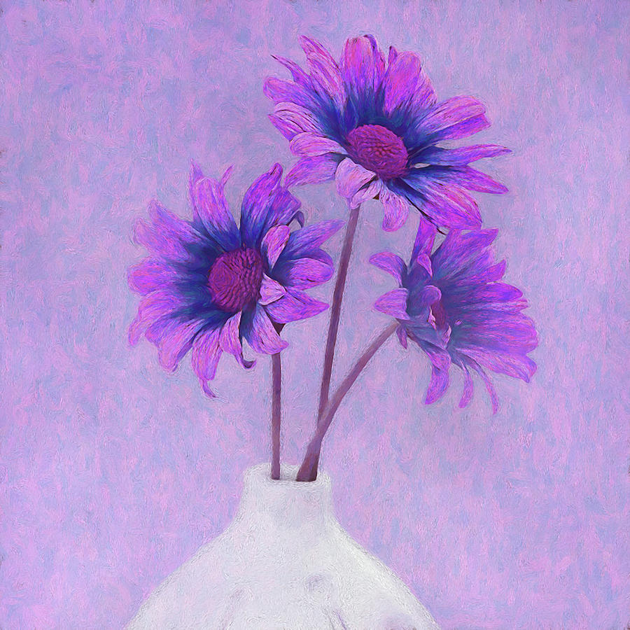 Chrysanthemums Photograph - Lavender Chrysanthemum Still Life by Tom Mc Nemar