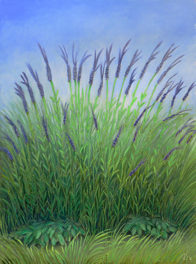Lavender Painting - Lavender by David Diethelm