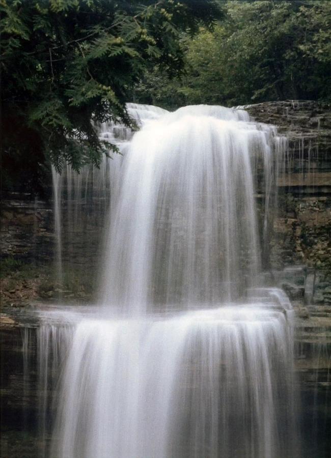 Lavender Falls by DArcy Evans