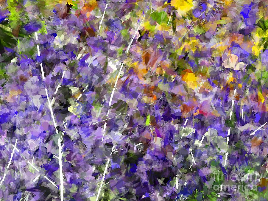 Lavender Photograph - Lavender by Jack Gannon