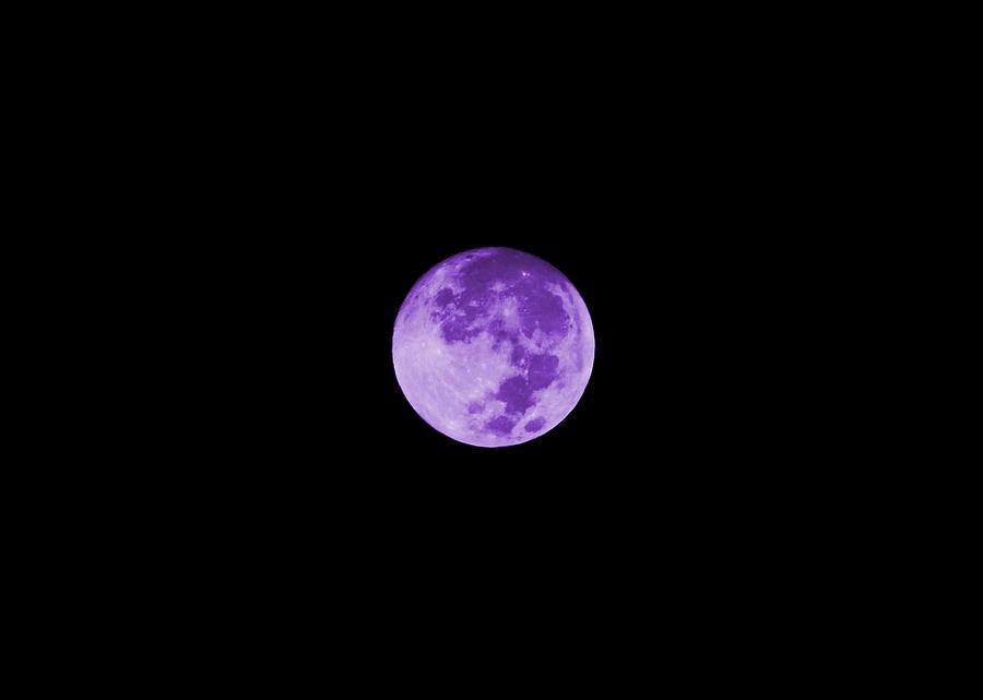 Lavender Moon Digital Art - Lavender Moon by Colleen Cornelius