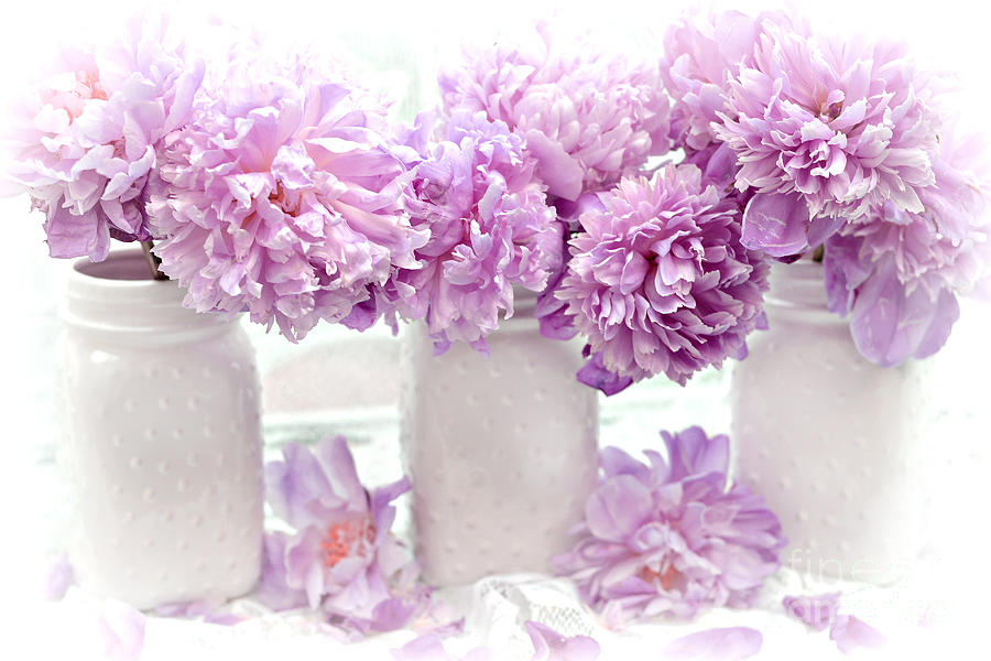 lavender peonies white mason jars romantic shabby chic lavender rh pixels com purple shabby chic furniture purple shabby chic wallpaper