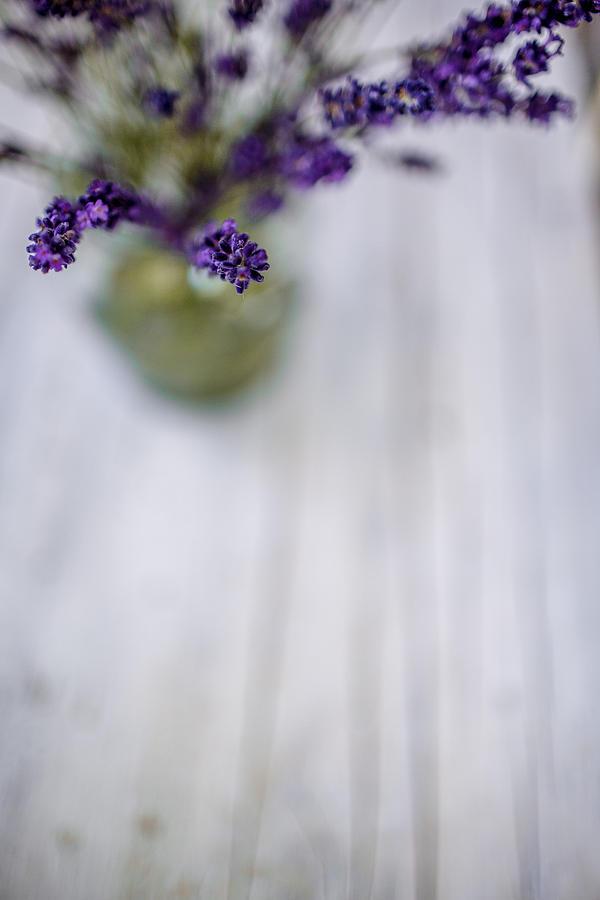 Lavender Photograph - Lavender Still Life by Nailia Schwarz