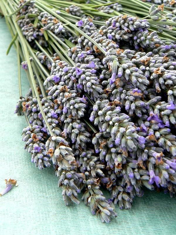 Lavender Photograph - Lavender Table by Kaarin  Keil