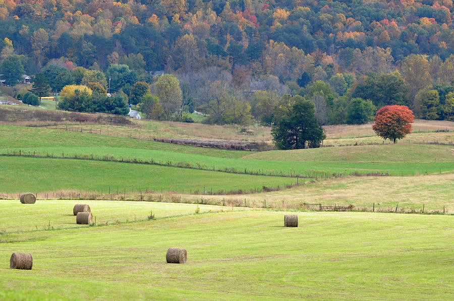 Landscapes Photograph - Layers Of Fields by Jan Amiss Photography