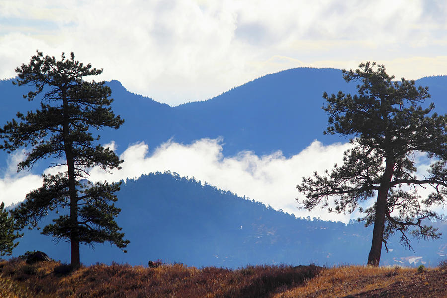 Layers Of Nature Photograph by Shane Bechler