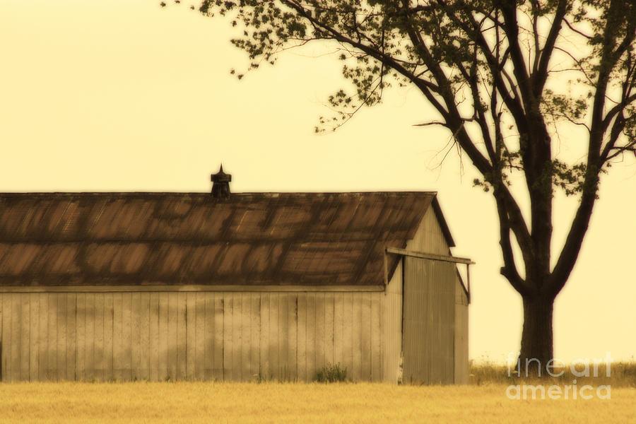 Farm Photograph - Lazy Days Barn  by Cathy Beharriell