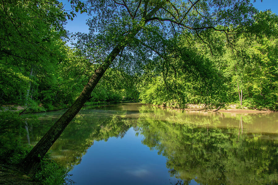 Lazy Summer Day On The River Photograph