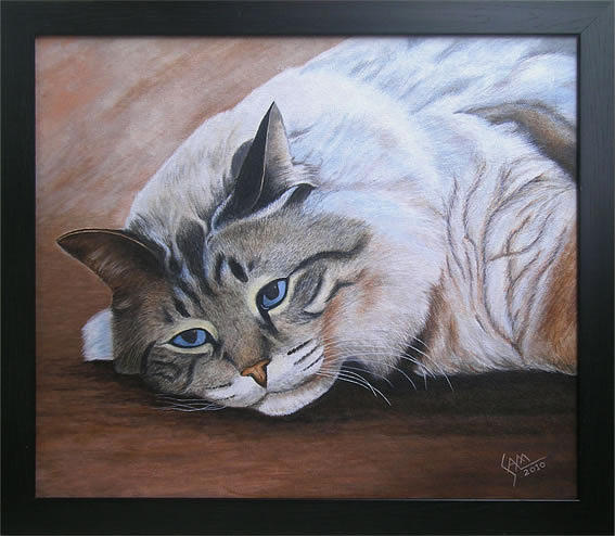 Cat Painting - Lazzy Cat  by Sam Joseph