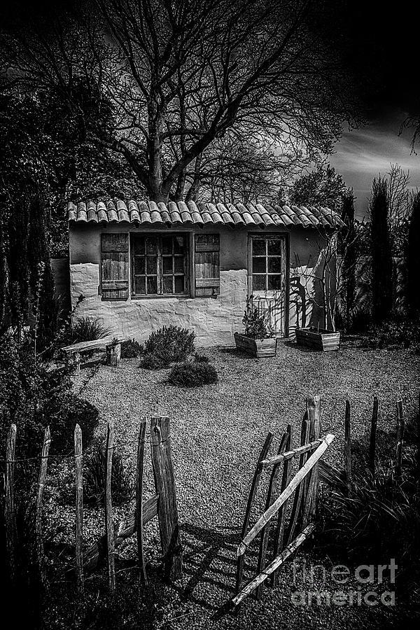 Le Jardin De Vincent Black And White Photograph