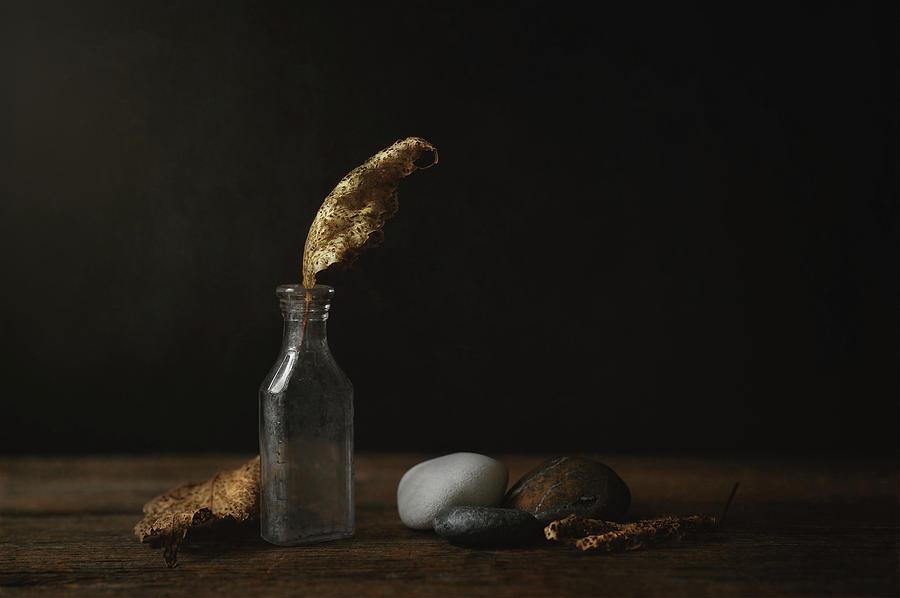 Leaf Bottle Rocks by Scott Norris