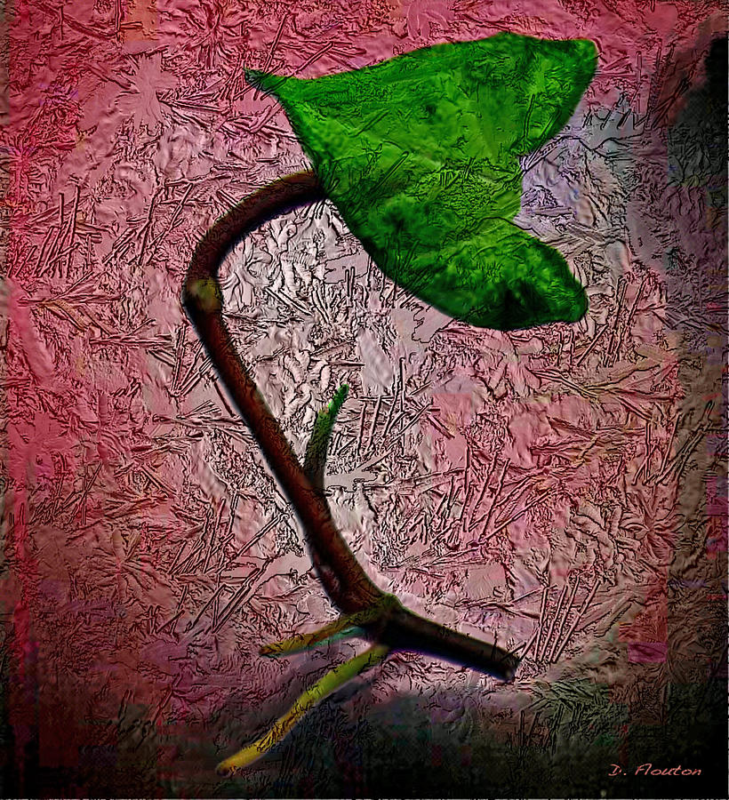 Green Photograph - Leaf by Dee Flouton