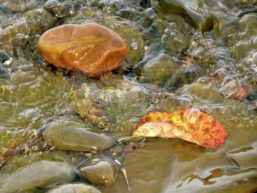 Rock Photograph - Leaf, Rock Leaf by Azthet Photography