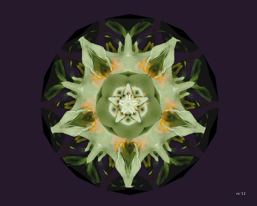 Abstract Photograph - Leafy Mandala by Rene Crystal