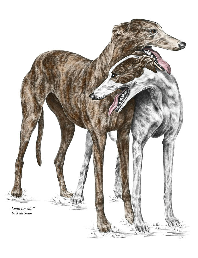 Greyhound Drawing - Lean on Me - Greyhound Dogs Print color tinted by Kelli Swan