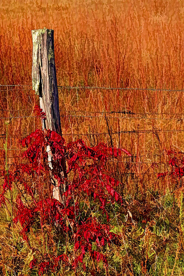 Appalachia Photograph - Lean On Me by HH Photography of Florida