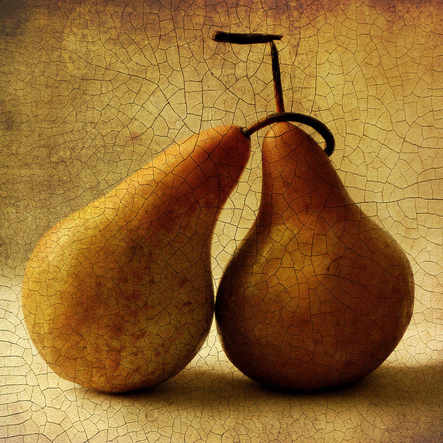 Pears Photograph - Lean On Me by Mandy Brown