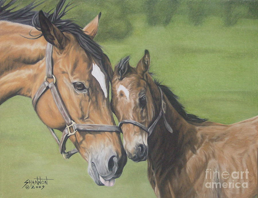 Mare Drawing - Lean On Me by Shannon Fleury