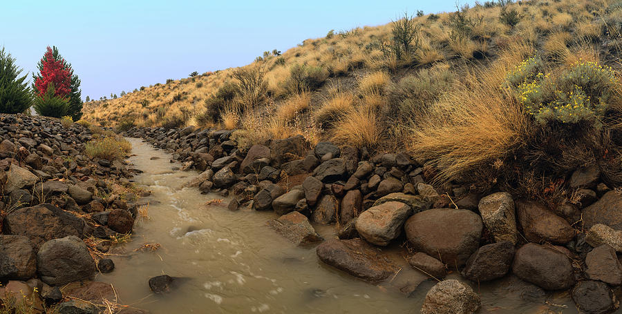 Learn To Swim, Creek Bed Quickly Filling With Water During Autumn Rainstorms In The High Desert Photograph