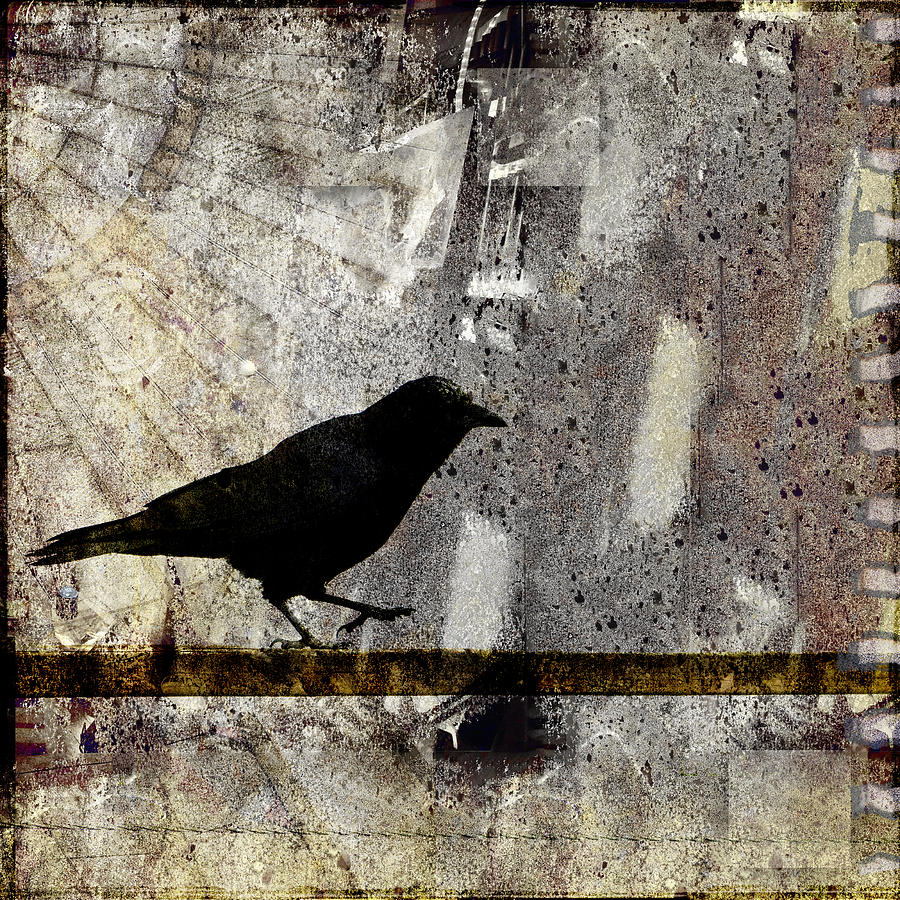 Crow Photograph - Learning To Navigate by Carol Leigh