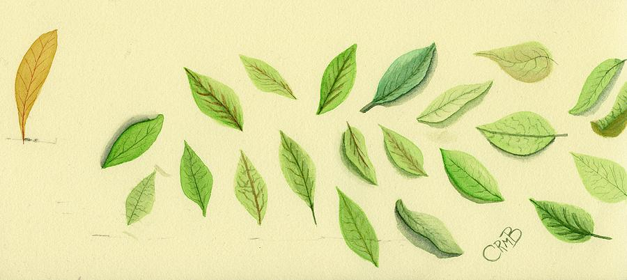 Leaves by Candace Bailly