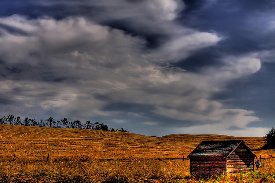 Landscape Photograph - Leaving The Shed by David Patterson