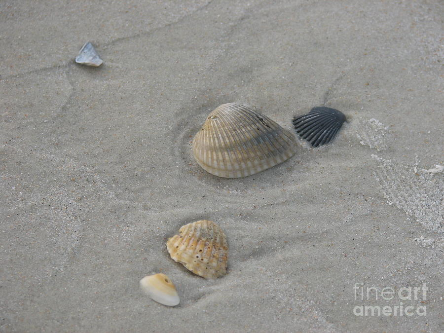 Sand Photograph - Left Behind by Kathy Flugrath Hicks