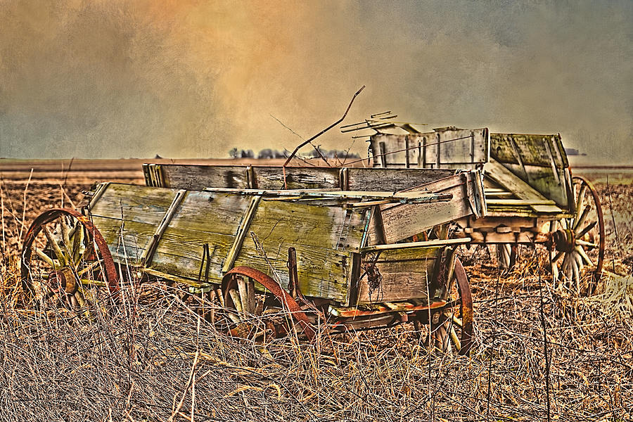 Wagon Photograph - Left Behind  by Theresa Campbell