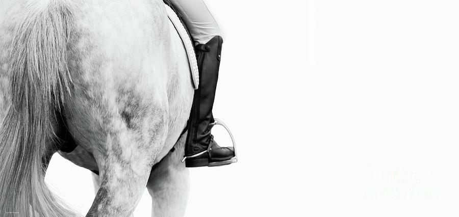Leg On - Dressage Series by Michelle Wrighton