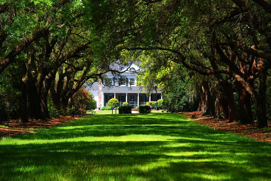 Historic Photograph - Legare Waring House Charleston Sc by Susanne Van Hulst