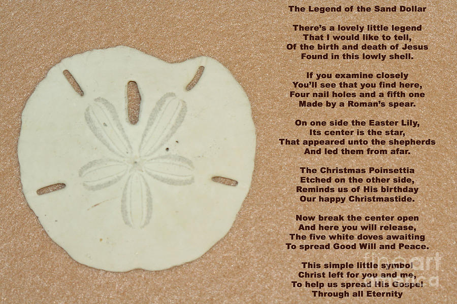 picture relating to The Legend of the Sand Dollar Printable referred to as Legend Of The Sand Greenback