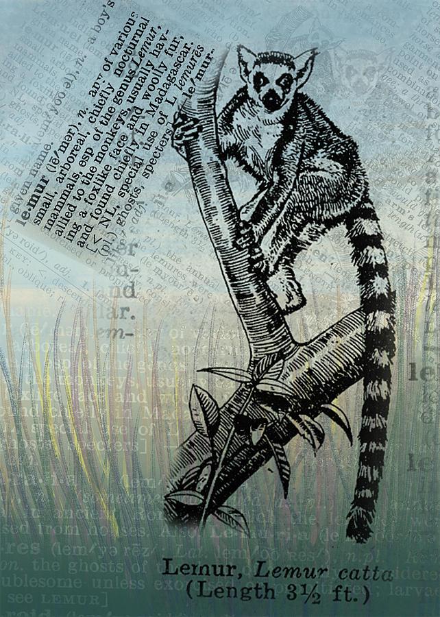 Lemur Digital Art - Lemur Catta by Mary Elizabeth Thompson