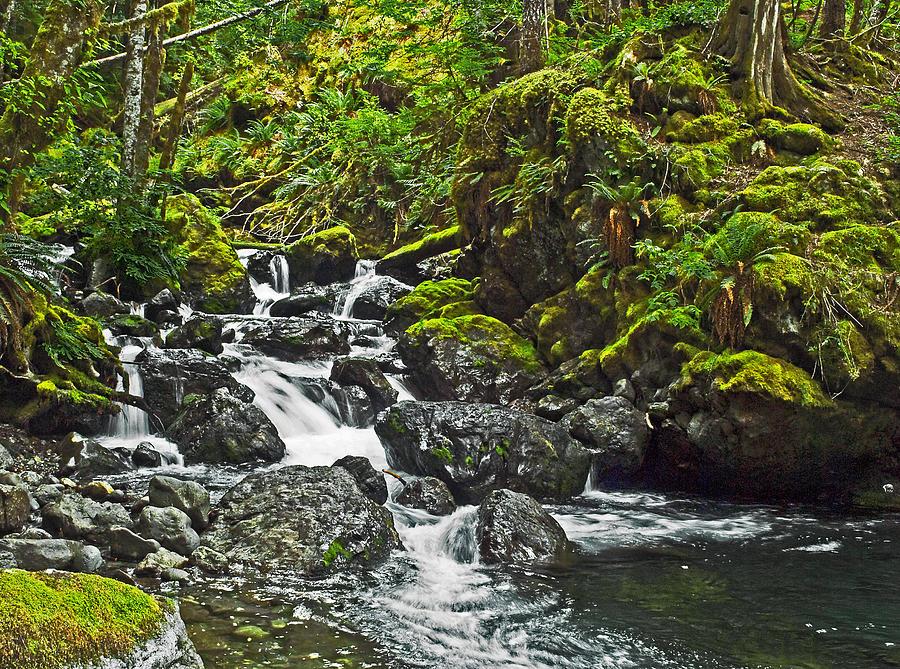 Lena Creek Photograph by Wilbur Young