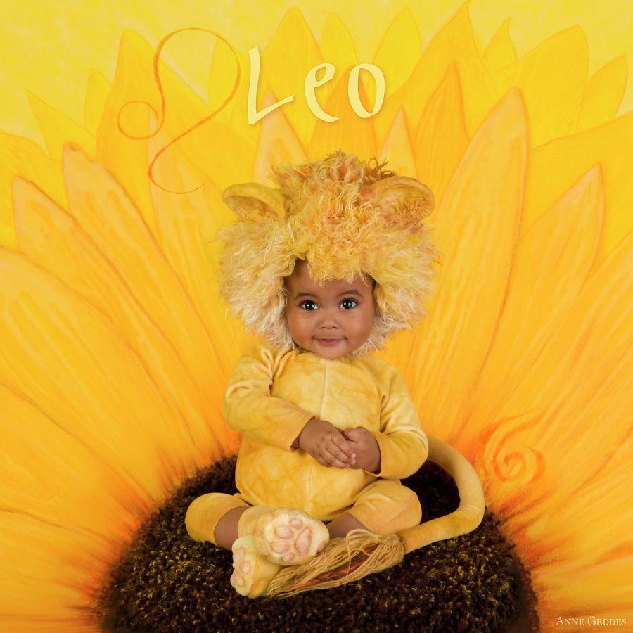 Leo Photograph By Anne Geddes