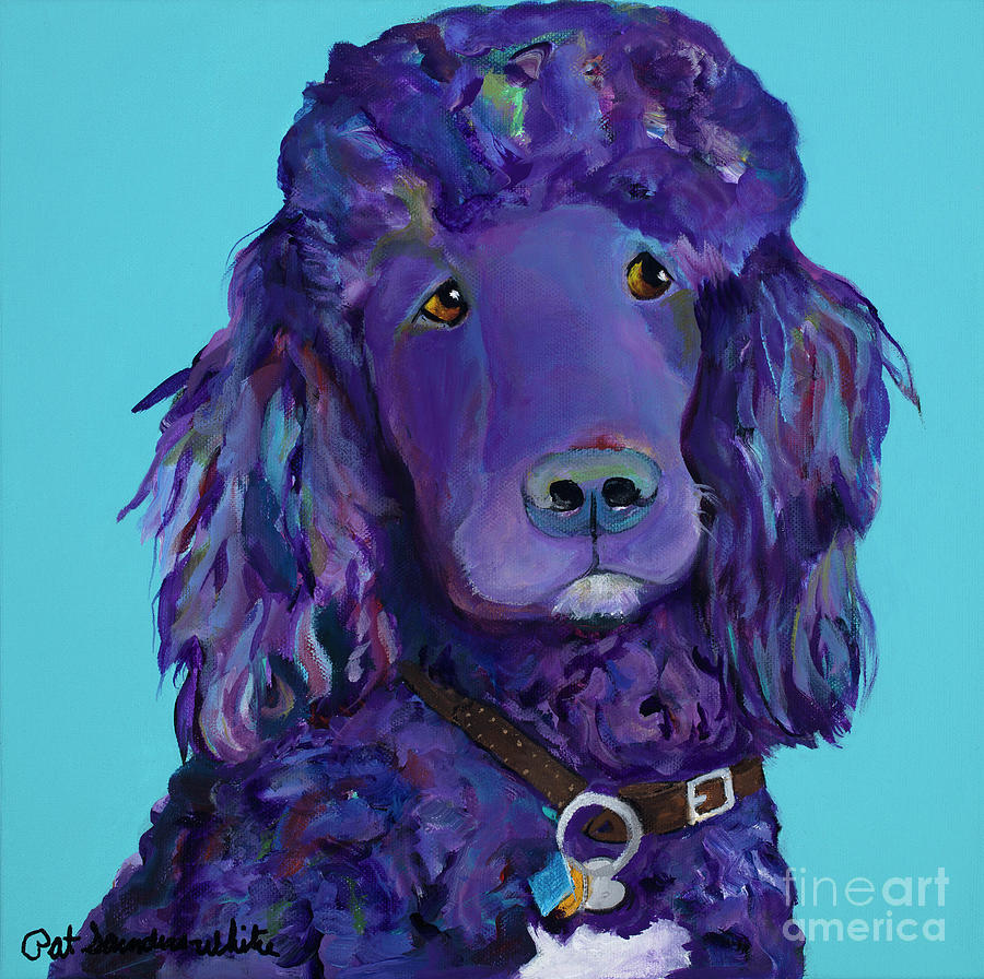 Standard Poodle Painting - Leo by Pat Saunders-White