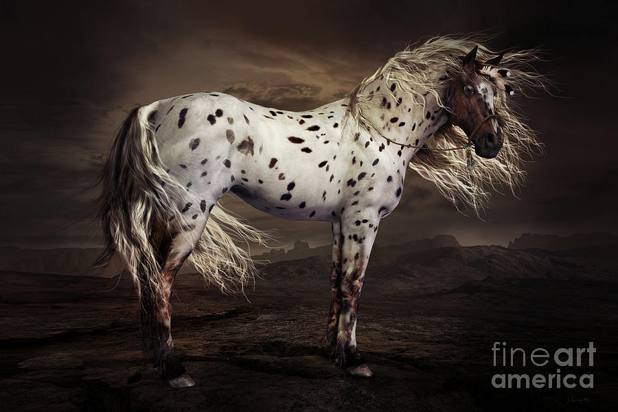 Leopard Appaloosa Digital Art - Leopard Appaloosa by Shanina Conway