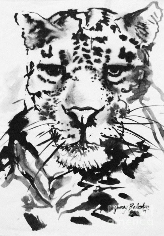 Leopard Painting - Leopard by Jamey Balester