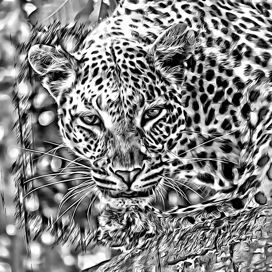 Leopard by Lucia Sirna