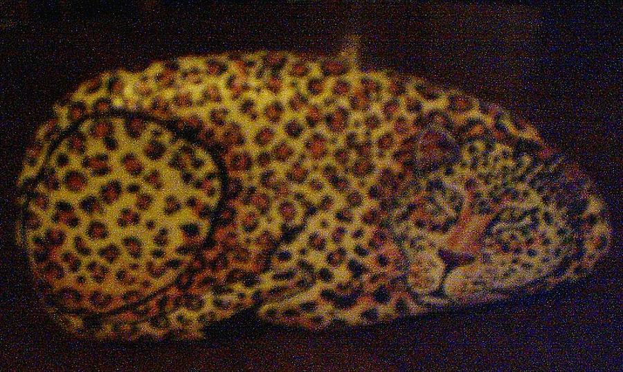 Leopard On Stone Painting by Christina Weber
