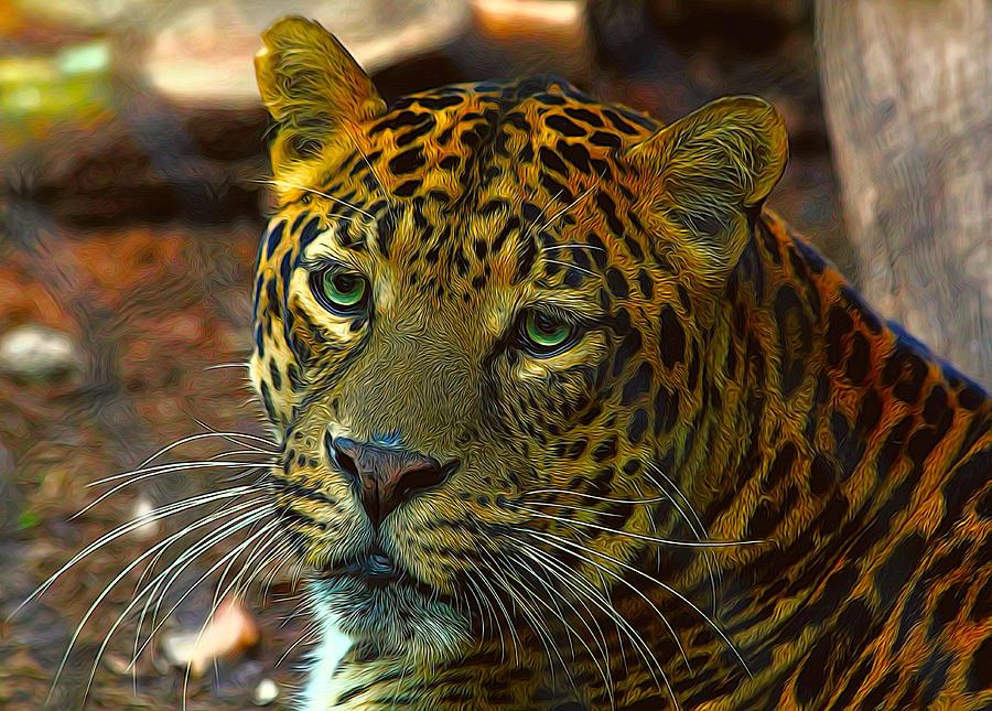 Leopard Photograph - Leopard Painted Vibrant Colors by Judy Vincent