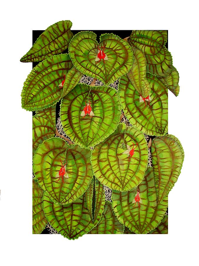 Orchid Painting - Lepanthes Calodictyon by Darren James Sturrock