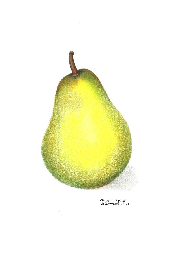 Poire Drawing - Les Poires by Sharon Blanchard