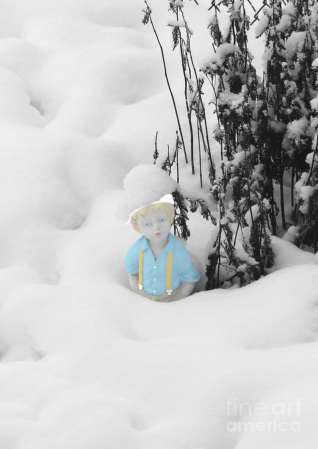 Garden Photograph - Let It Snow by Al Bourassa