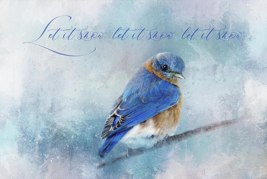Texture Digital Art - Let It Snow by Terry Davis