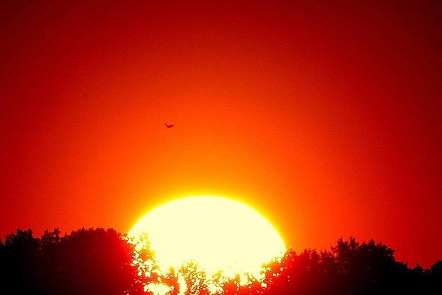 Sun Photograph - Let The Sun Through by Robert Martin