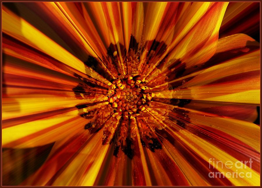 Nature Abstract Photograph - Let Your Light Shine by Carol Groenen