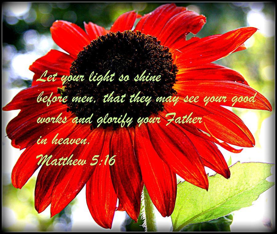 Sunflower Photograph - Let Your Light So Shine by Robert Babler