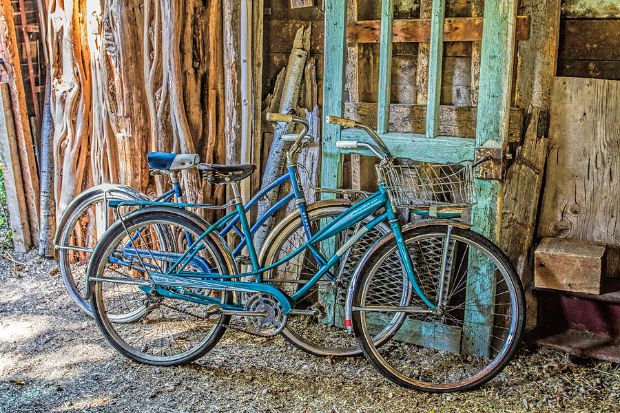 Lets Go For A Ride Photograph by Alana Thrower