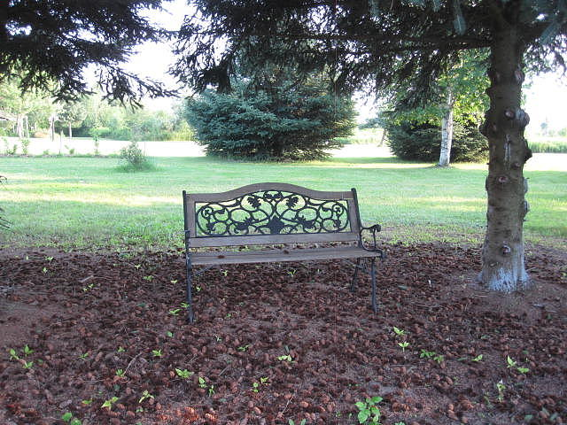 Let's Sit Awhile by Rebecca Mento